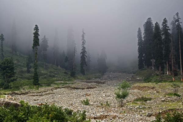 """Rugged Pasture: The firing drill has reduced meadow into a rugged territory. Green cover has vanished in many parts. In """"absence of state intervention"""", nearby woods have been thinning and making the place vulnerable for erosions and landslides."""