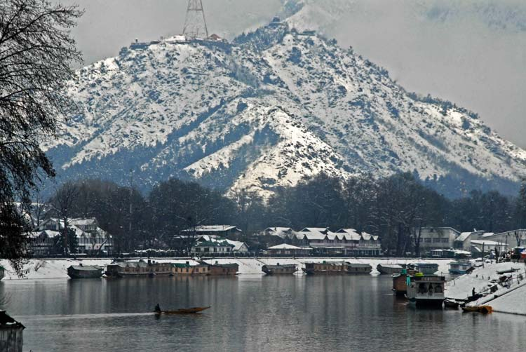 Picture Perfect: The fresh snowfall has indeed set the senses into delight