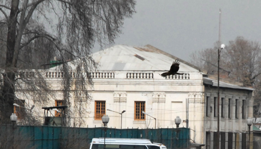 Sher Ghari Palace
