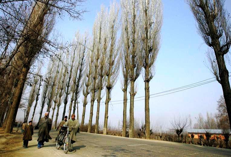 india-kashmir-winter-2009-12-22-17-13-35