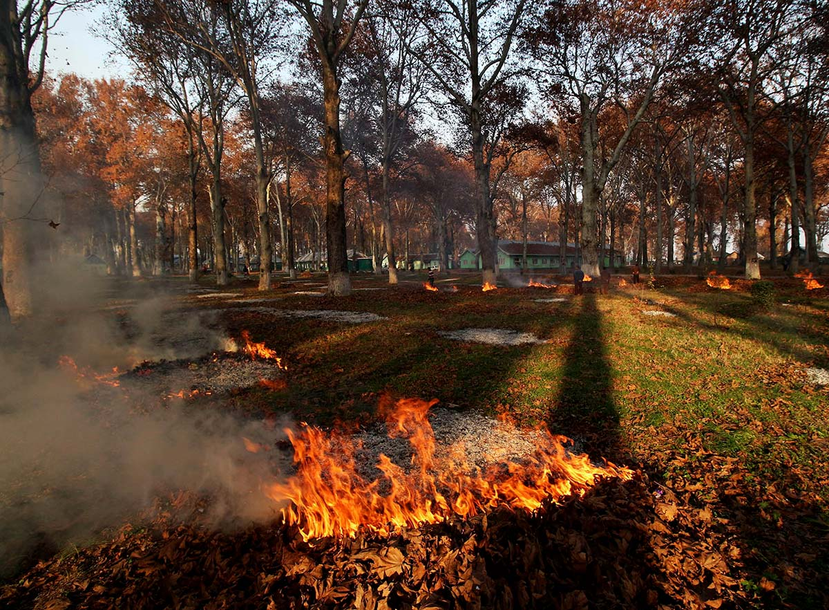 ) By afternoon, aromatic smoke of burning leaves wafts across miles of area. People turn up to witness the leftover ash from the burnt Chinar pyres.