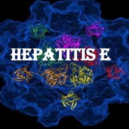 how to get hepatitis e